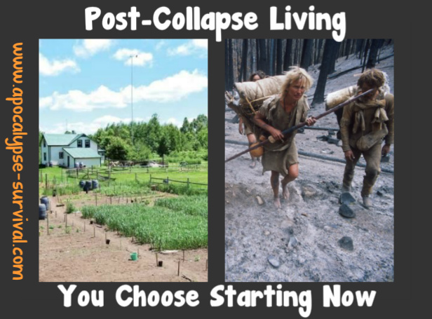 PostApocalypseLivingYouChooseStartingNow