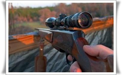 best survival rifle