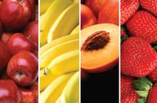freezedriedfruits