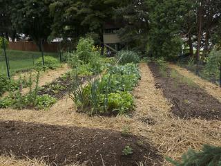Till Gardening Back Eden Method For Easy Virtually